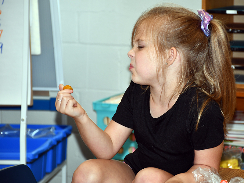 At first glance, West Fannin Elementary School student Jaycee Hunt wasn't a  big fan of the heirloom tomatoes her class was given thanks to the United States Department of Agriculture's Fresh Fruit and Vegetable Program, but she tried them nonetheless.