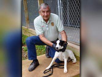 Sparky, a male mix, was picked up on Salem Road in Mineral Bluff June 24 and is looking for a forever home. He is younger, so he is full of life. View him using intake number 176-20. He is shown being held by Animal Control Officer J.R. Cornett.